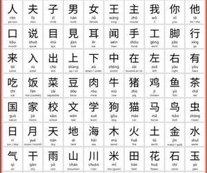china, chinese, and education image