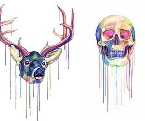 skull, deer, and art image
