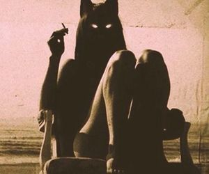 cat, cigarette, and smoke image