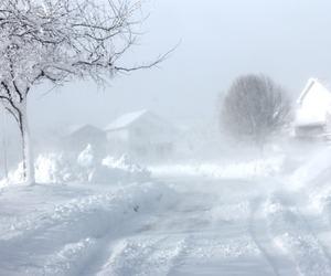 barn, farm, and blizzard image