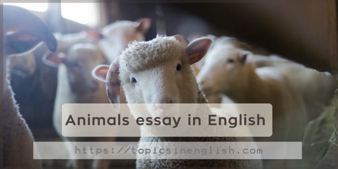 animals essay in english on we heart it animals article and english image