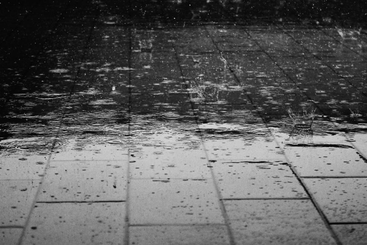 rain and article image