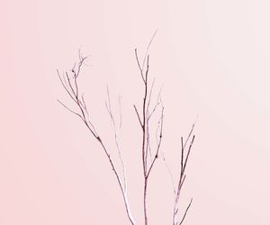 minimalist, wallpapers, and backgrounds image