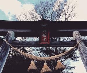 日本, 鳥居, and バイキング image