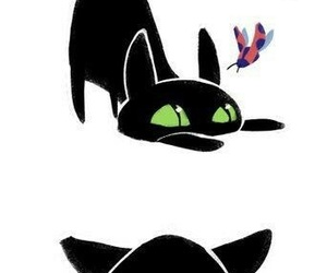 Adrien, anime, and black cat image