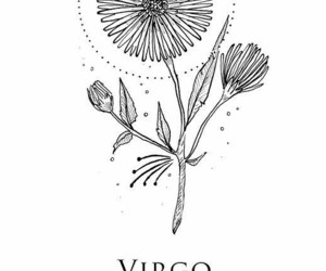 tumblr, virgo, and art image