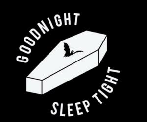 bat, coffin, and vampire image