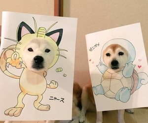 cute, dog, and pokemon image