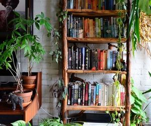 books and plants image