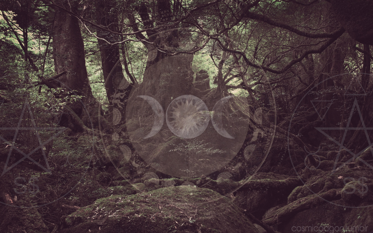 Image Result For Witchy Wallpaper Tumblr On We Heart It