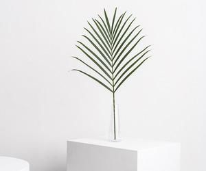 minimal image