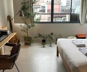plants, aesthetic, and bedroom image