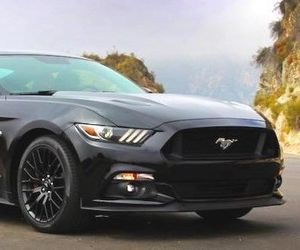 black, car, and mustang image