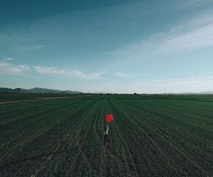 baloon, red, and field image