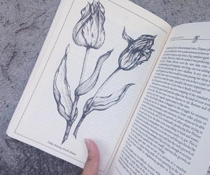book, books, and floral image