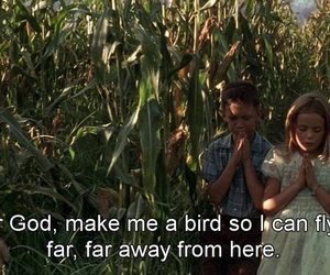 forrest gump, bird, and child image