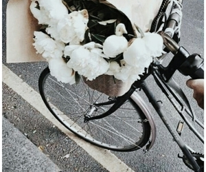 aesthetic, bike, and bouquet image