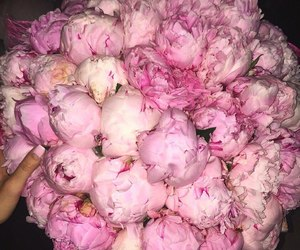 bouquet, chic, and fleurs image