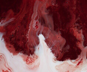 red, blood, and aesthetic image