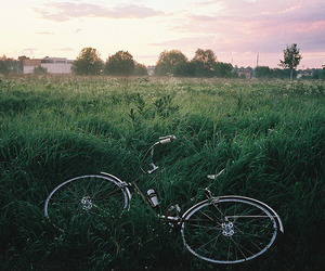 bike, nature, and green image