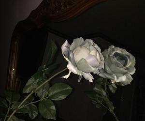 rose, dark, and flowers image