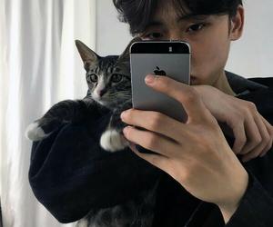 ulzzang, boy, and cat image