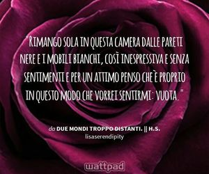 ff, Harry Styles, and due mondi troppo distanti image