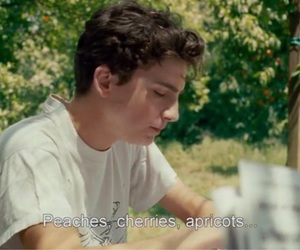 80s, quote, and call me by your name image