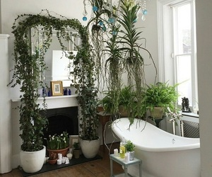 bath, bathroom, and nature image
