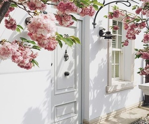door, flowers, and white image