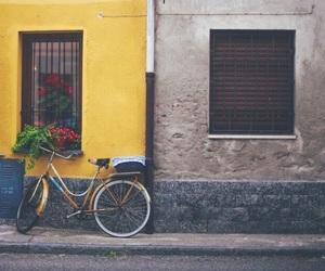bike, vintage, and yellow image