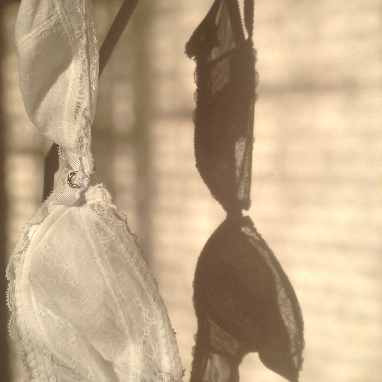 delicate, shadow, and lace image