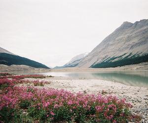 landscape, pretty, and nature image