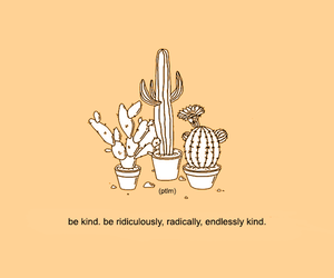 cactus, reminder, and orange image