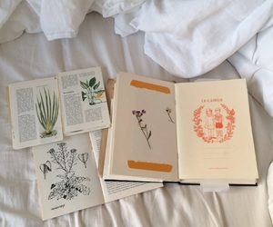 tumblr, book, and aesthetic image
