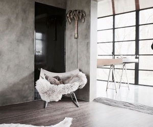 carpet and decor image