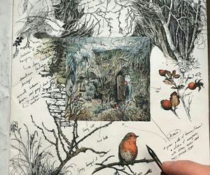 branches, illustration, and ladybird image
