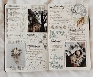 journal, book, and bullet journal image