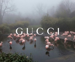 aesthetic, gucci, and article image