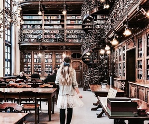 book, library, and study image
