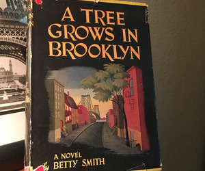 book, novel, and a tree grows in brooklyn image