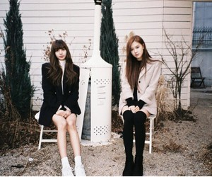aesthetic, park rose, and girls image