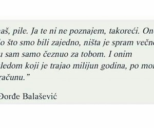 balkan, quotes, and citat image
