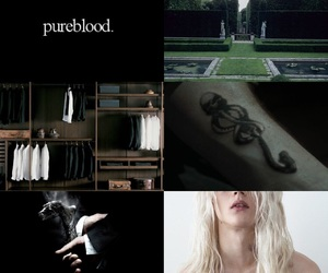 hogwarts, Lucius, and slytherin image