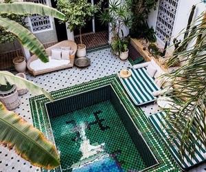 boho, plants, and pool image