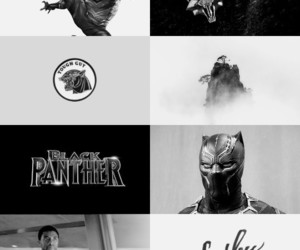 aesthetic, black panther, and character image