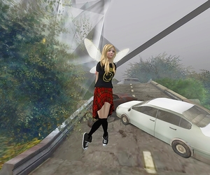 SecondLife and SL image