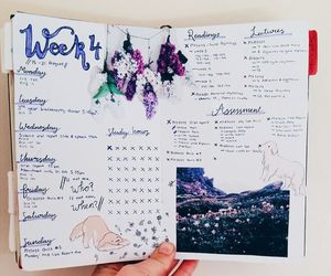 inspiration, planner, and bullet journal image