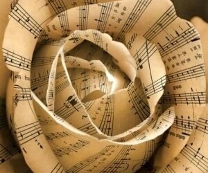 music, rose, and music notes image