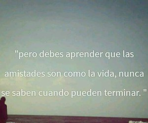 frases, true, and friends image